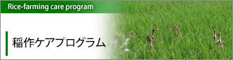 稲作ケアプログラム